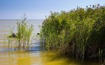 Lago Sinoe, lacul Sinoe, Rumania, blog de eRumania