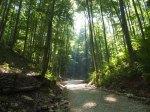 Rumania, camino para hacer senderismo en los montes Bucegi