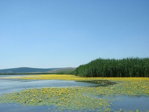 lacul Razim, blog de eRumania