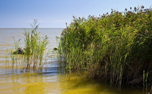 Lacul-Sinoe